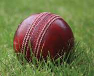 Image of a cricket ball