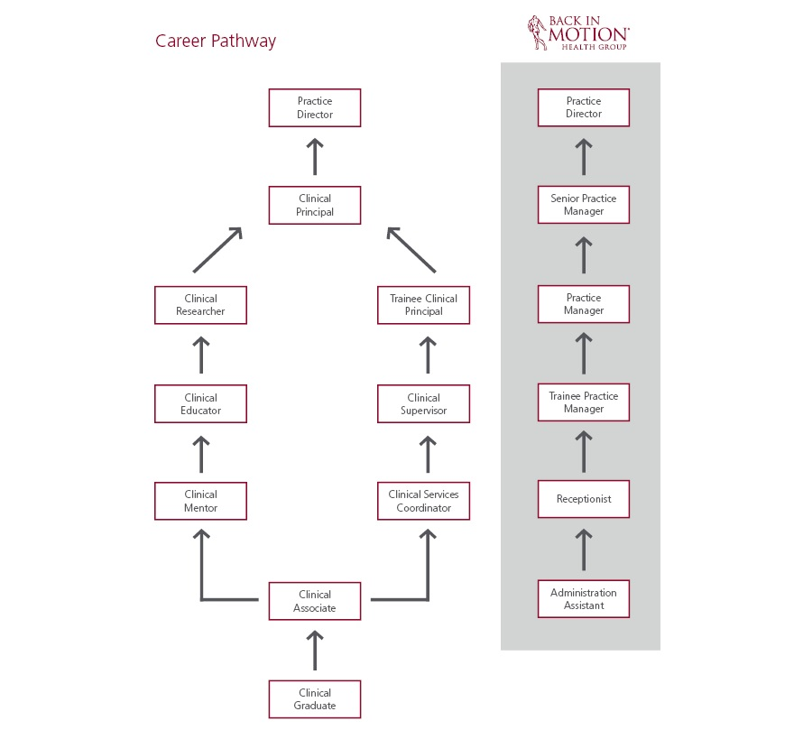 Back In Motion Career Pathway